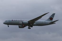 Sharp Fukudaさんが、成田国際空港で撮影したエア・カナダ 787-8 Dreamlinerの航空フォト(飛行機 写真・画像)