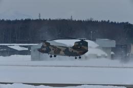 パラノイアさんが、三沢飛行場で撮影した航空自衛隊 CH-47J/LRの航空フォト(飛行機 写真・画像)