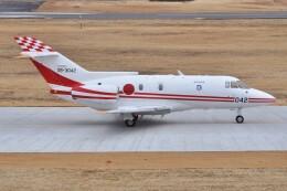 デルタおA330さんが、入間飛行場で撮影した航空自衛隊 U-125 (BAe-125-800FI)の航空フォト(飛行機 写真・画像)