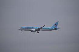 hachiさんが、成田国際空港で撮影した大韓航空 A220-300 (BD-500-1A11)の航空フォト(飛行機 写真・画像)