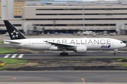 三軒 那乃さんが、羽田空港で撮影した全日空 777-281の航空フォト(飛行機 写真・画像)