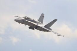 hanatomo735さんが、岩国空港で撮影したアメリカ海兵隊 F/A-18C Hornetの航空フォト(飛行機 写真・画像)
