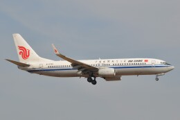 Flying A340さんが、成田国際空港で撮影した中国国際航空 737-89Lの航空フォト(飛行機 写真・画像)