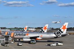 hachiさんが、成田国際空港で撮影したジェットスター・ジャパン A320-232の航空フォト(飛行機 写真・画像)
