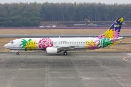 (新)ふぁんとむ改さんが、熊本空港で撮影したスカイネットアジア航空 737-43Qの航空フォト(飛行機 写真・画像)