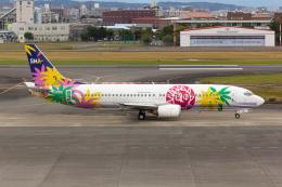 (新)ふぁんとむ改さんが、宮崎空港で撮影したスカイネットアジア航空 737-43Qの航空フォト(飛行機 写真・画像)