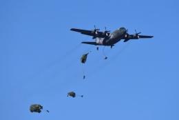 23Skylineさんが、習志野演習場で撮影した航空自衛隊 C-130H Herculesの航空フォト(飛行機 写真・画像)