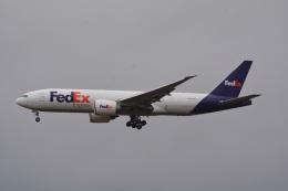 LEGACY-747さんが、成田国際空港で撮影したフェデックス・エクスプレス 777-F28の航空フォト(飛行機 写真・画像)