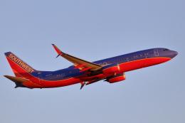 キャスバルさんが、フェニックス・スカイハーバー国際空港で撮影したサウスウェスト航空 737-8H4の航空フォト(飛行機 写真・画像)