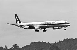 A-330さんが、横田基地で撮影したアロー航空 DC-8-63CFの航空フォト(飛行機 写真・画像)