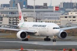 kan787allさんが、福岡空港で撮影した日本航空 777-246/ERの航空フォト(飛行機 写真・画像)