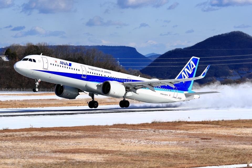 くれないさんの全日空 Airbus A321neo (JA133A) 航空フォト