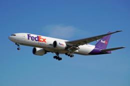ちゃぽんさんが、成田国際空港で撮影したフェデックス・エクスプレス 777-FS2の航空フォト(飛行機 写真・画像)