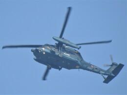 いねねさんが、岐阜基地で撮影した航空自衛隊 UH-60Jの航空フォト(飛行機 写真・画像)