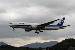 もぐ3さんが、福岡空港で撮影した全日空 777-281の航空フォト(飛行機 写真・画像)