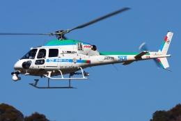 ブルーさんさんが、静岡ヘリポートで撮影した中日本航空 AS355Nの航空フォト(飛行機 写真・画像)
