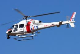 ブルーさんさんが、静岡ヘリポートで撮影した東邦航空 AS355Nの航空フォト(飛行機 写真・画像)