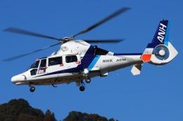 ブルーさんさんが、静岡ヘリポートで撮影したオールニッポンヘリコプター AS365N3 Dauphin 2の航空フォト(飛行機 写真・画像)