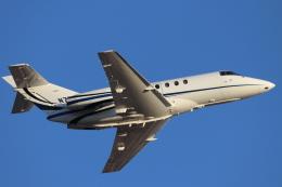 キャスバルさんが、フェニックス・スカイハーバー国際空港で撮影したTAUGHANNOCK AVIATION Hawker 800の航空フォト(飛行機 写真・画像)