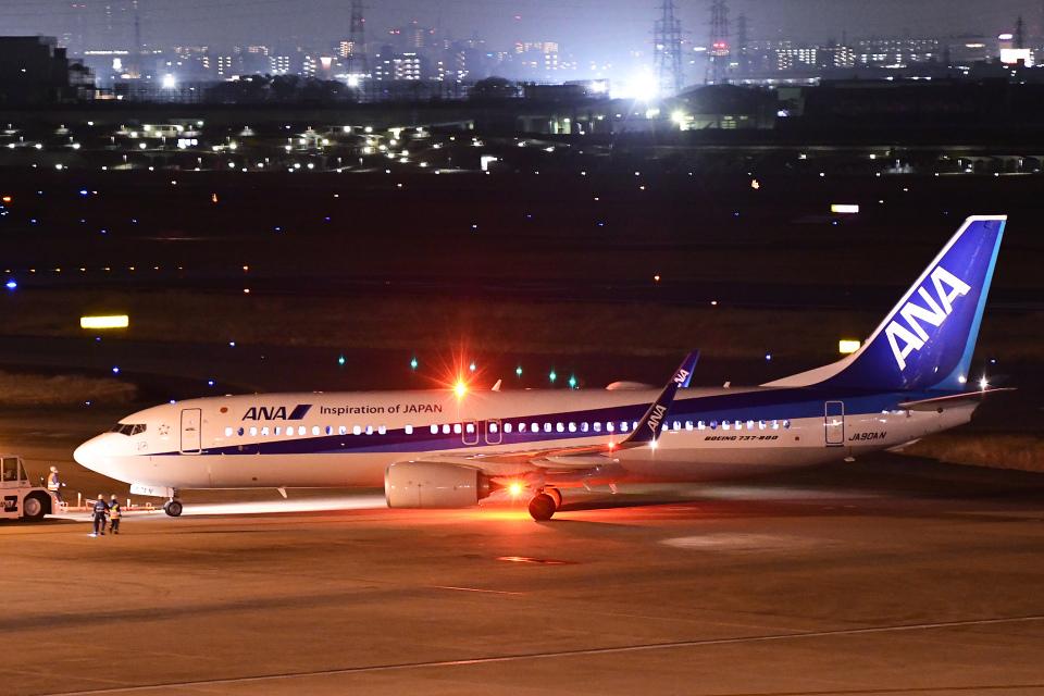 TOPAZ102さんの全日空 Boeing 737-800 (JA90AN) 航空フォト