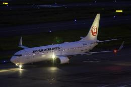 K.Sさんが、羽田空港で撮影した日本航空 737-846の航空フォト(飛行機 写真・画像)