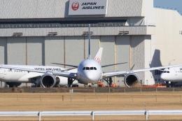 Hiro-hiroさんが、成田国際空港で撮影した日本航空 787-9の航空フォト(飛行機 写真・画像)