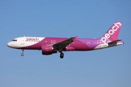 sky-spotterさんが、成田国際空港で撮影したピーチ A320-214の航空フォト(飛行機 写真・画像)