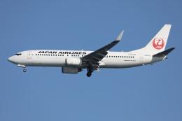 sky-spotterさんが、羽田空港で撮影した日本航空 737-846の航空フォト(飛行機 写真・画像)