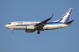 sky-spotterさんが、羽田空港で撮影した全日空 737-781の航空フォト(飛行機 写真・画像)