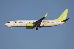 sky-spotterさんが、羽田空港で撮影したソラシド エア 737-81Dの航空フォト(飛行機 写真・画像)