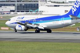 平凡なおっちゃんさんが、伊丹空港で撮影したANAウイングス 737-54Kの航空フォト(飛行機 写真・画像)