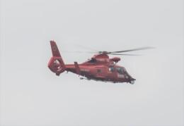 ヘリオスさんが、東京ヘリポートで撮影した東京消防庁航空隊 AS365N3 Dauphin 2の航空フォト(飛行機 写真・画像)