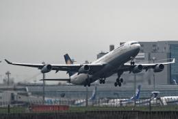 Lacnorさんが、羽田空港で撮影したルフトハンザドイツ航空 A340-313Xの航空フォト(飛行機 写真・画像)