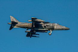 ゆーすきんさんが、厚木飛行場で撮影したアメリカ海兵隊 AV-8B Harrier II+の航空フォト(飛行機 写真・画像)