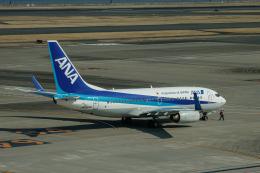 ゆーすきんさんが、羽田空港で撮影した全日空 737-781の航空フォト(飛行機 写真・画像)