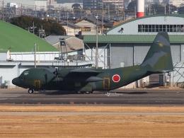 FT51ANさんが、名古屋飛行場で撮影した航空自衛隊 C-130H Herculesの航空フォト(飛行機 写真・画像)