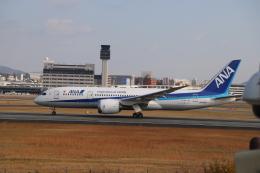 なみちゃんねるさんが、伊丹空港で撮影した全日空 787-8 Dreamlinerの航空フォト(飛行機 写真・画像)