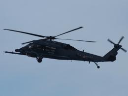 FT51ANさんが、名古屋飛行場で撮影した航空自衛隊 UH-60Jの航空フォト(飛行機 写真・画像)