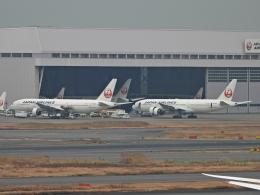 チャレンジャーさんが、羽田空港で撮影した日本航空 777-289の航空フォト(飛行機 写真・画像)