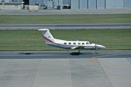 Gambardierさんが、名古屋飛行場で撮影した日本法人所有 PA-42-1000 Cheyenne IVの航空フォト(飛行機 写真・画像)