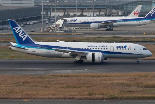walker2000さんが、羽田空港で撮影した全日空 787-8 Dreamlinerの航空フォト(飛行機 写真・画像)