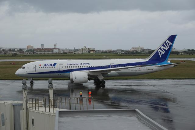 神宮寺ももさんが、宮古空港で撮影した全日空 787-8 Dreamlinerの航空フォト(飛行機 写真・画像)