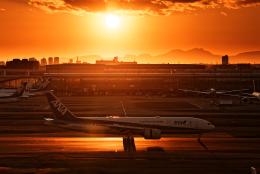 SGR RT 改さんが、羽田空港で撮影した全日空 777-281/ERの航空フォト(飛行機 写真・画像)