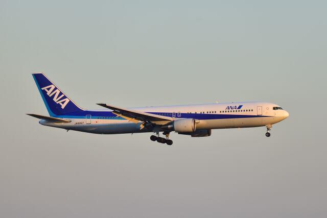 ポン太さんが、羽田空港で撮影した全日空 767-381の航空フォト(飛行機 写真・画像)