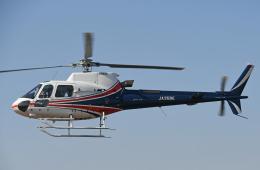 チャーリーマイクさんが、東京ヘリポートで撮影したノエビア AS350B3 Ecureuilの航空フォト(飛行機 写真・画像)