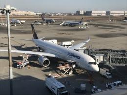 flyingmasさんが、羽田空港で撮影したルフトハンザドイツ航空 A350-941の航空フォト(飛行機 写真・画像)