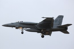 cassiopeiaさんが、厚木飛行場で撮影したアメリカ海軍 F/A-18E Super Hornetの航空フォト(飛行機 写真・画像)
