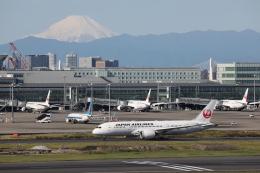 航空フォト:JA826J 日本航空 787-8 Dreamliner