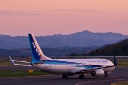 h_wajyaさんが、福島空港で撮影した全日空 737-881の航空フォト(飛行機 写真・画像)