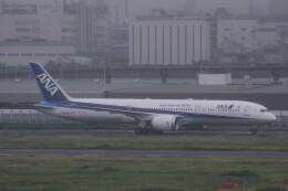 Mr.boneさんが、羽田空港で撮影した全日空 787-9の航空フォト(飛行機 写真・画像)
